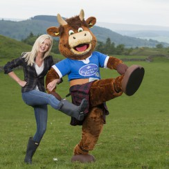 Highland Bull, Quality Meat Scotland Brand Mascot