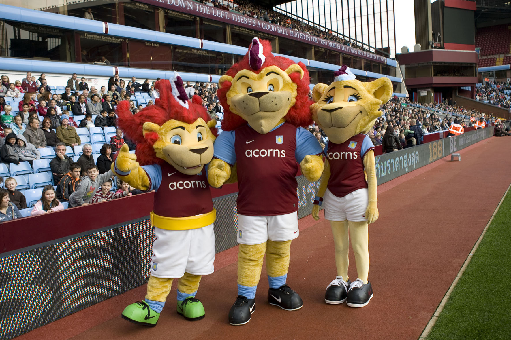 Hercules, Bella & Chip Aston Villa FC