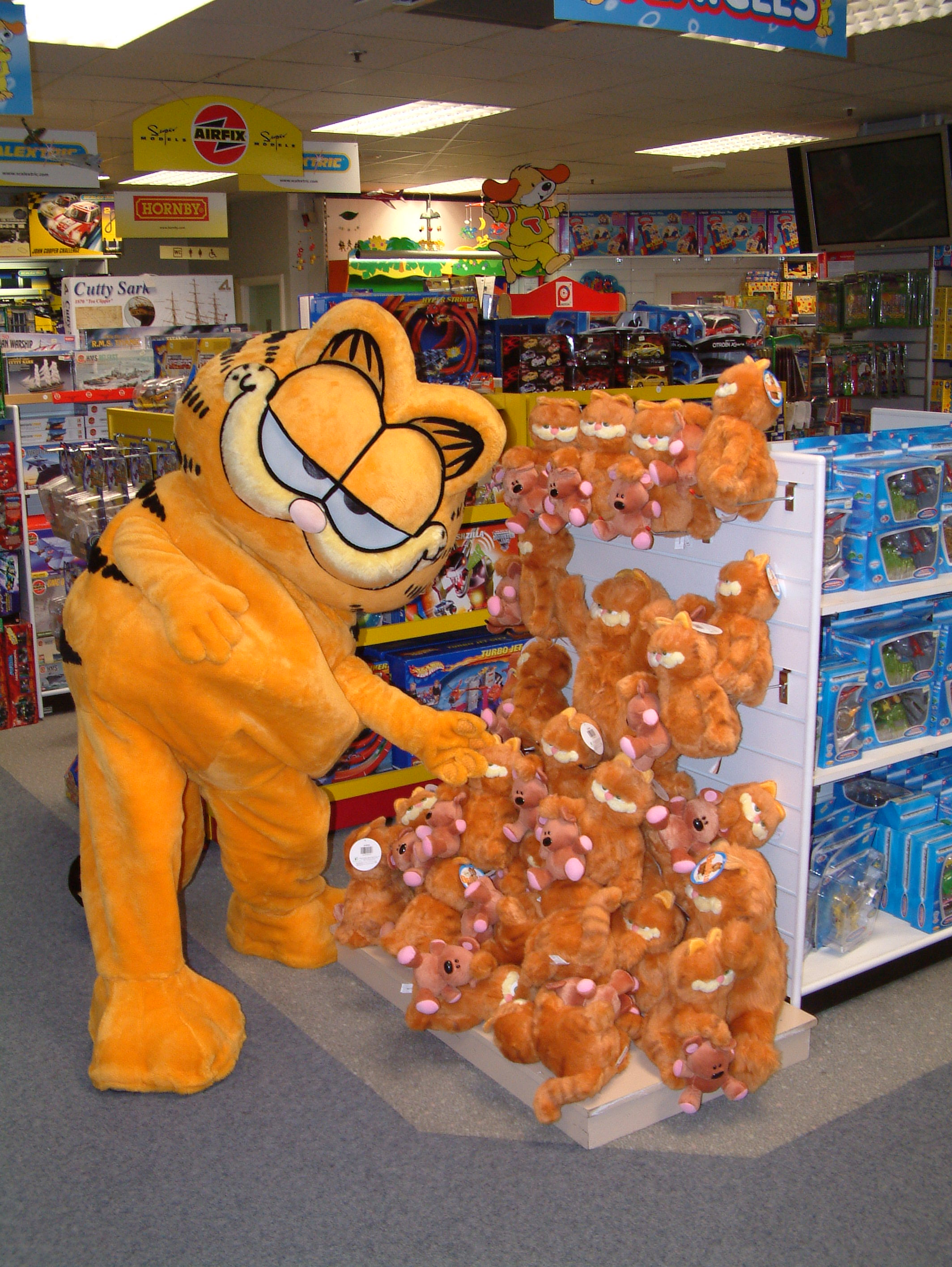 Garfield at Roomes Store