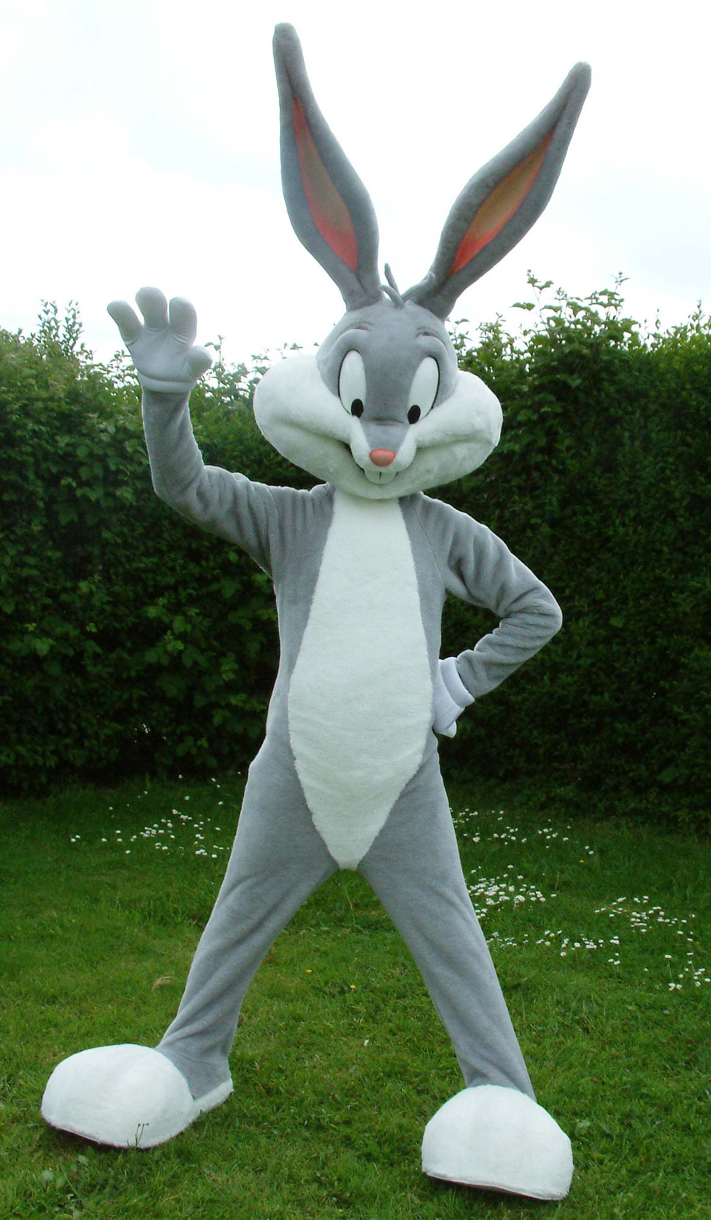 Bugs Bunny costume character mascot outdoors