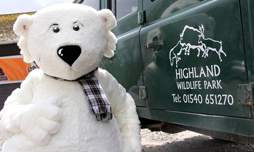 Highland Wildlife Park - Walker Polar Bear Mascot