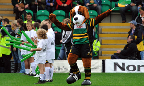 Northampton Saints - Bernie