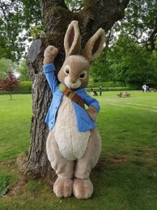 Peter Rabbit pictured at Audley End Miniature Railway